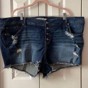 Torrid Plus Size Distressed Shorts